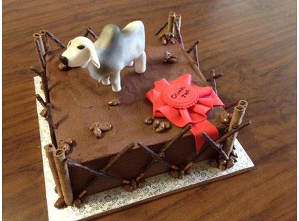 Cattle Kraal