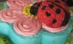 Ladybugs and Flower Cake